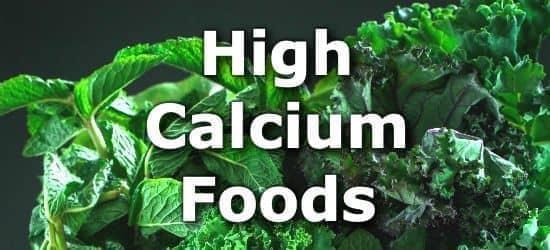 Top 10 Foods Highest in Calcium