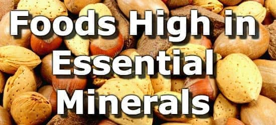The Top 15 Foods Highest in Minerals