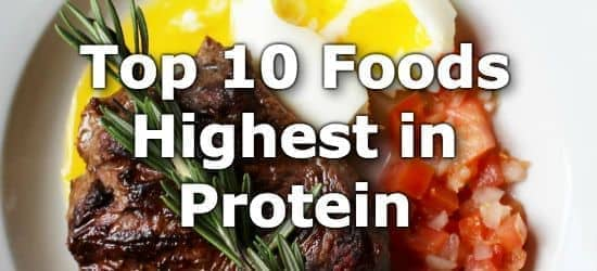 Top 10 Foods Highest in Protein + Printable One Page Sheet